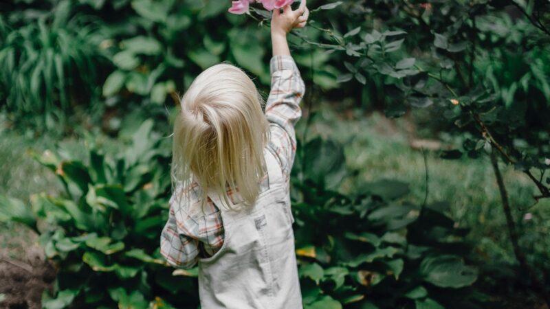 Gør noget godt for din pengepung og naturen, ved at købe brugt babytøj og børnetøj